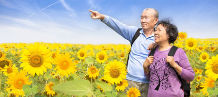 Seniors travel insurance cover